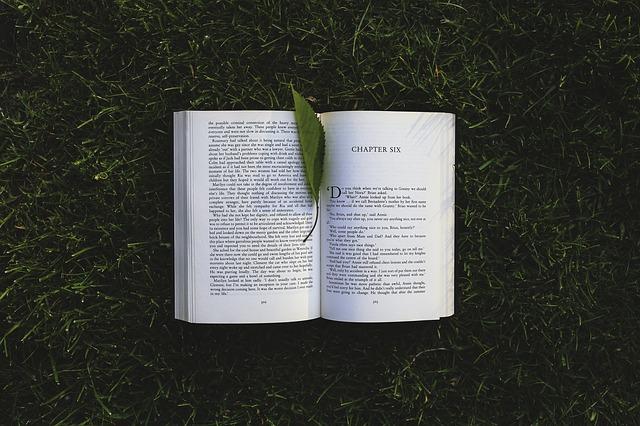 book-791765_640